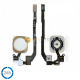TASTO HOME PER IPHONE 5S ORO (COMPATIBILE)